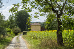 Countryside in Dordogne Valley Perigord Noir France. Europe royalty free stock photo