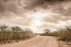 Countryside Dry Road landscape at Cariri Paraiba Brazil. Infinity Dry Road with dark clouds, a sign of water, landscape at Cariri, Paraiba, Brazilian Countryside Royalty Free Stock Photos