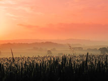 The countryside - early morning sunrise Stock Photo