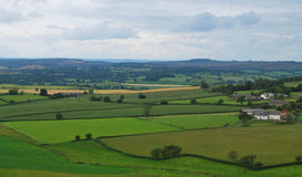 Countryside in England. Countryside in Devon - South West England Stock Image