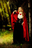 Countryside fairytale Royalty Free Stock Photo