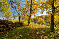 Countryside fall landscape Stock Image