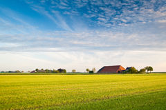 Countryside with farmer. And meadows Royalty Free Stock Photos