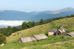 Barns and cows in the mountains. stock photos