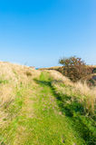 Countryside field path Stock Images