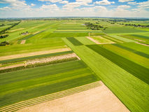 Countryside and field seen from the bird`s eye view. Crop fields stretching to the horizon. Crop field photo with a dron. Fields and bats seen from the bird`s stock image