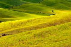 Countryside fields Stock Photo