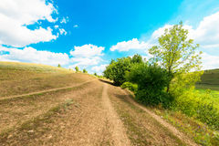 Countryside with fields on the background of blue sky Royalty Free Stock Image