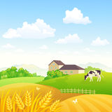 Countryside fields. Illustration of a beautiful rural scenery with a house and wheat fields Stock Photo