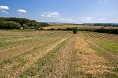 Countryside fields landscape Royalty Free Stock Image