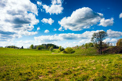 Countryside Fields and Sky Royalty Free Stock Photo