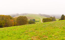 Countryside at foggy day. Royalty Free Stock Photos
