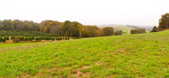 Countryside at foggy day. Royalty Free Stock Images