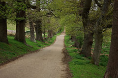 Countryside footpath Stock Photo