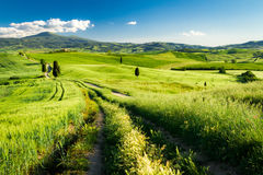 Countryside footpath in Tuscany Stock Image