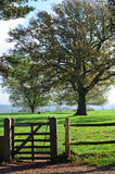 Countryside gate in Sussex, England. Royalty Free Stock Image