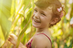 Countryside girl in corn field Stock Images