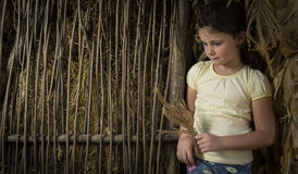 Countryside girl in corn Stock Photography