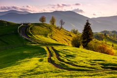 Countryside with grassy slopes at sunset. Wooden fence along the dirt road through rolling hills. beautiful landscape of Carpathian mountains in springtime Stock Photo