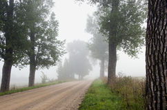 Countryside gravel road and  mist Royalty Free Stock Image