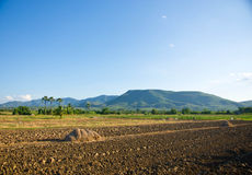 Countryside. Ground preparation, planting rice Thailand with mountains behind Stock Photography
