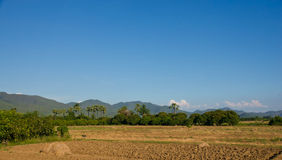 Countryside. Ground preparation, planting rice Thailand with mountains behind Stock Photos