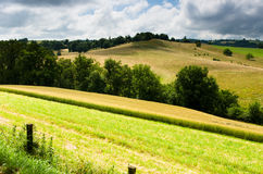 Countryside Royalty Free Stock Photo