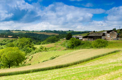 Countryside Royalty Free Stock Image