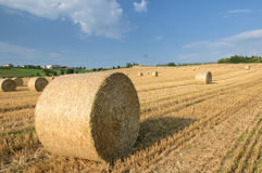 Countryside Royalty Free Stock Images