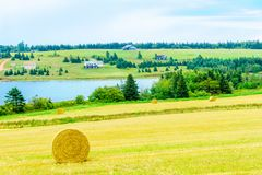 Countryside and haystacks near French River, PEI. View of countryside and haystacks near French River, Prince Edward Island, Canada royalty free stock photos