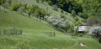 Countryside hill stock photos