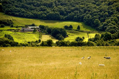 Countryside hills Royalty Free Stock Images