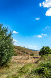 Countryside in the hills of Tuscany Royalty Free Stock Images