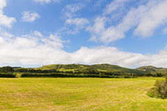 Countryside hilly landscape with pastures and meadows. Royalty Free Stock Image