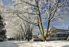 Countryside homes covered by snow Royalty Free Stock Images