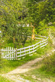 Countryside Stock Image