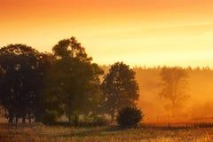 Countryside hot morning Stock Photo