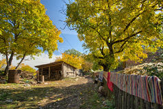 Countryside house in fall season Royalty Free Stock Photo