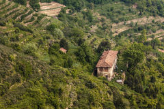 Countryside house. An old beautiful countryside house surrounded by green terraces stock photos