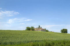 Countryside house in wheet Royalty Free Stock Images
