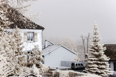 Countryside infrared winter view, Alsace Royalty Free Stock Image