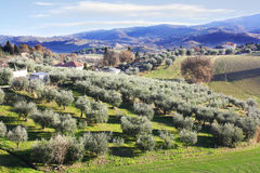 Countryside Italian landscape Royalty Free Stock Photography