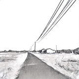 Countryside journey landscape in monochrome palette. Straight road in wheat fields. Stock Images
