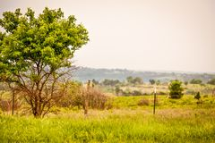 Countryside in Kansas. Country scene during a sunrise in the Flint hills of Kansas Royalty Free Stock Photos