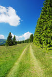 Countryside in Krkonose mountains Stock Photography