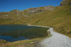 Countryside lake stock image