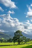 Countryside of the Lake District Stock Image