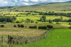 Countryside of the Lake District Stock Images