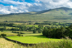 Countryside of the Lake District Stock Photo