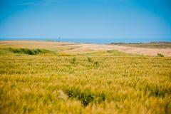 Countryside landscapa at Karatas Royalty Free Stock Photo